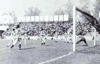 Дунав - женски футбол